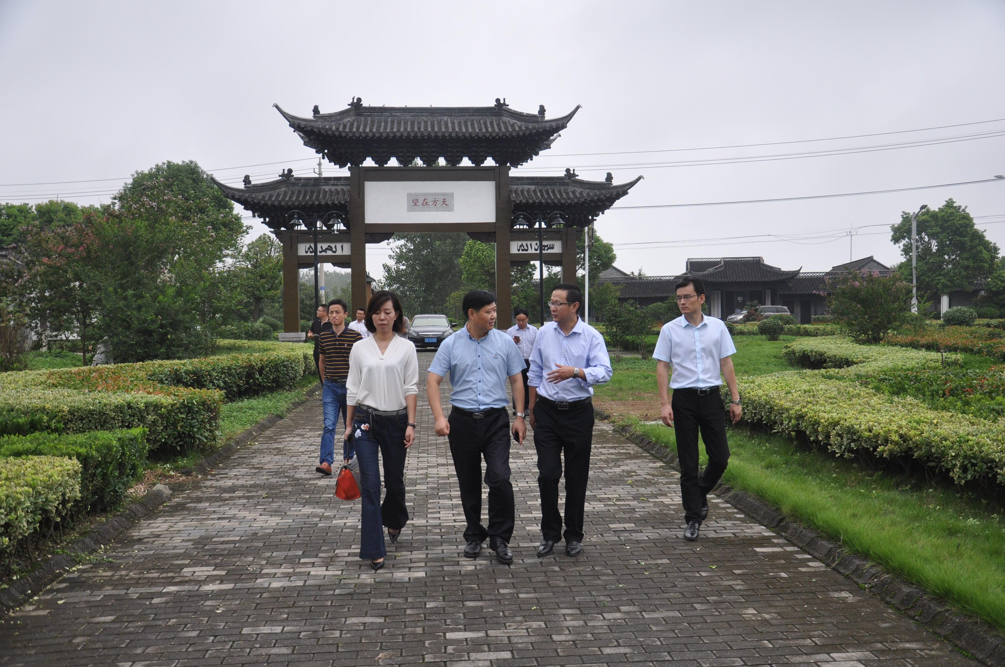金鹏v一行领导一行前往菱塘回族乡考察参观歌曲美食节的图片